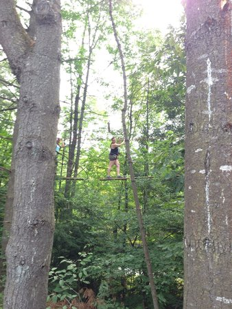 Adirondack Extreme Adventure Course: Walking across logs strung between trees...  Challenging but tons of fun!!