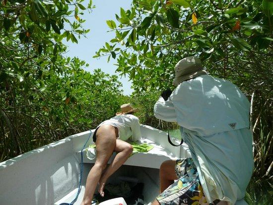 Sian Ka'an Biosphere Reserve: Mayan Canal