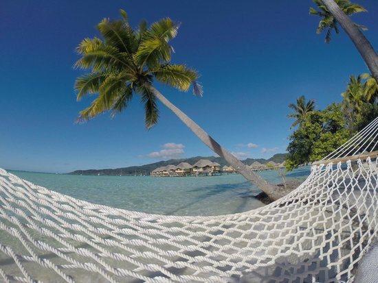 Le Taha'a Island Resort & Spa: Hammocks