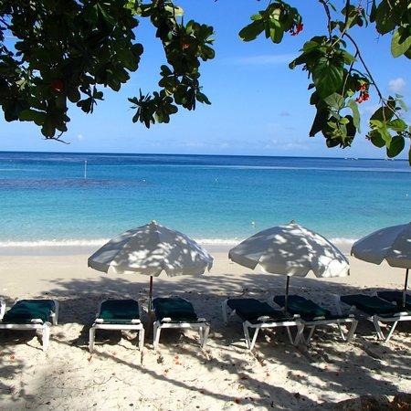 Mango Bay All Inclusive: plage près du restaurant