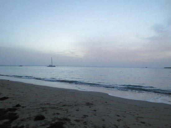 BlueBay Villas Doradas Adults Only : Beach