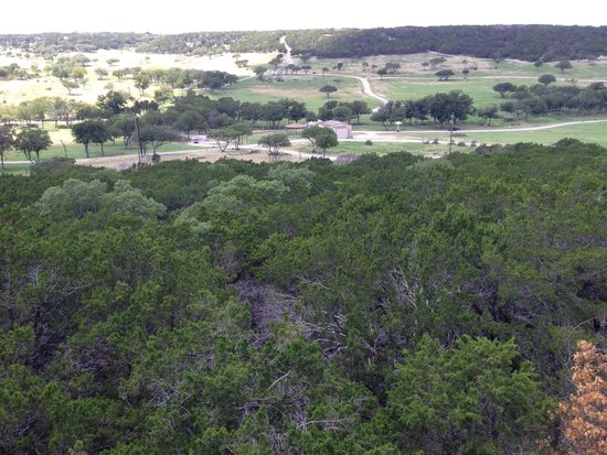 Fossil Rim Wildlife Center: View from the gift store.
