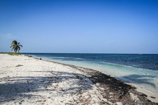 Mayan Beach Garden: The shipwreck beach... Tolan