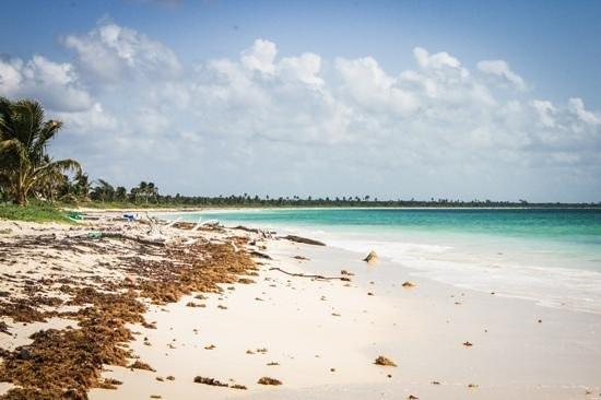 Mayan Beach Garden: Zafiro Beach