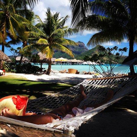 Four Seasons Resort Bora Bora: hammocks on the beach