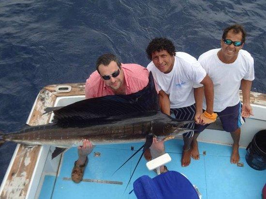 Sailfish picture of papagayo fishing charters playas for Costa rica fishing season