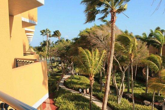 Hilton Aruba Caribbean Resort & Casino: View from room