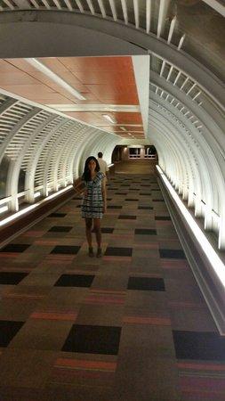 The Condado Plaza Hilton: Túnel que conecta los hoteles.