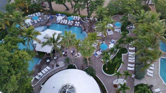 The Condado Plaza Hilton: Área de las piscinas