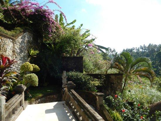 Viceroy Bali: Beautiful, Lush Grounds