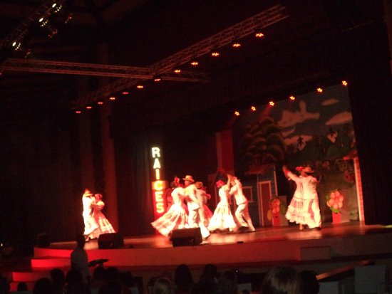 Grand Palladium Punta Cana Resort & Spa : Show raíces