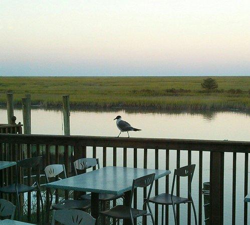 Island House Restaurant: Un point de vue de la salle à manger intérieure.