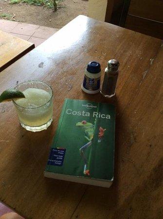 Gilded Iguana Hotel: day one at the iguana