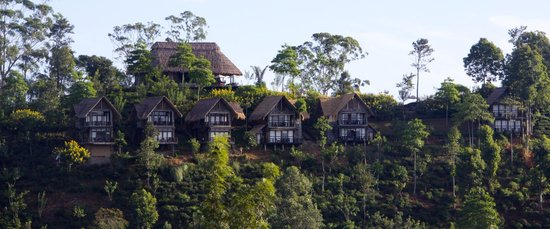 98 Acres Resort : Hotel view