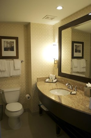 Hilton Orlando Bonnet Creek : Bathroom vanity