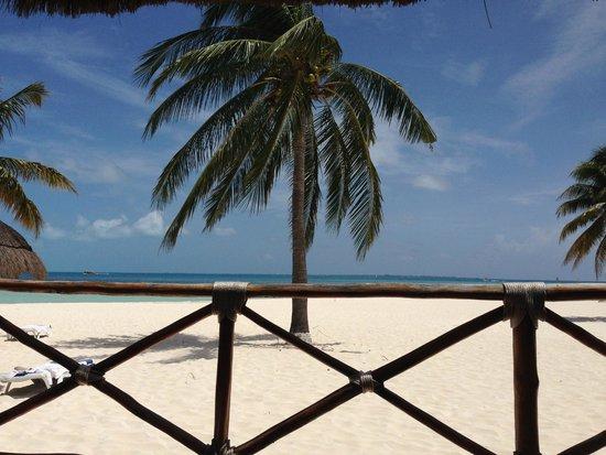 Presidente InterContinental Cancun Resort: esta es la playa tomada desde el restaurante