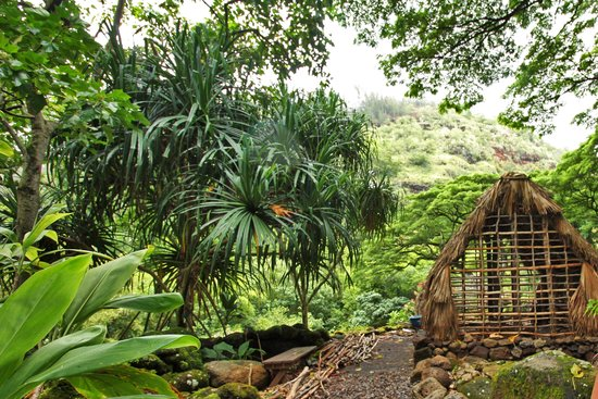 Waimea Valley: .