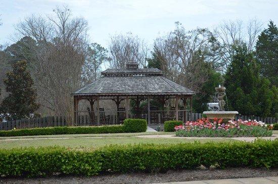 Whimsical Botanical Gardens