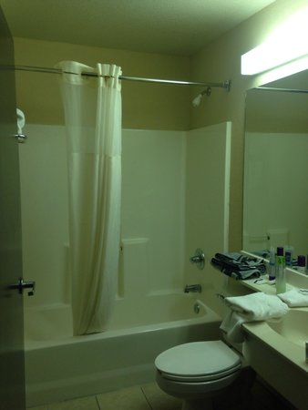 Microtel Inn & Suites by Wyndham Houston: Bathroom