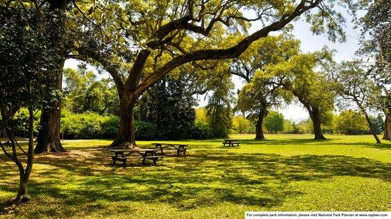 Charles Pinckney National Historic Site: Picnic area