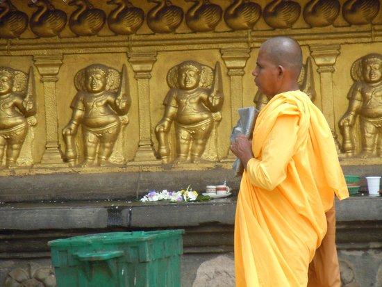 Kelaniya Raja Maha Vihara: Kelaniya - monk