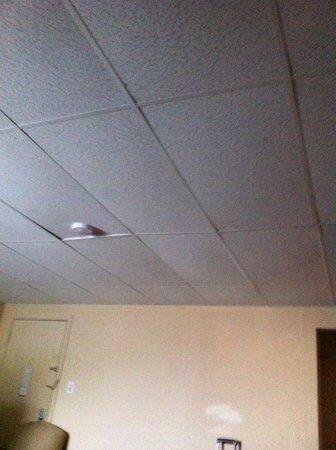 Travelodge South Burlington : Ceiling
