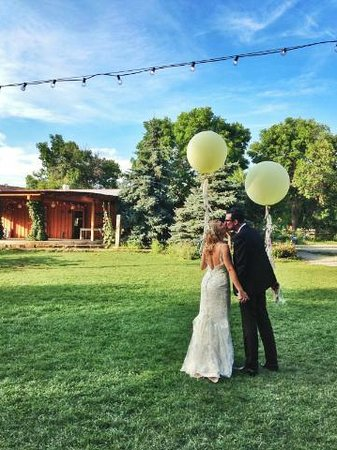 Lyons Farmette : Beautiful August wedding