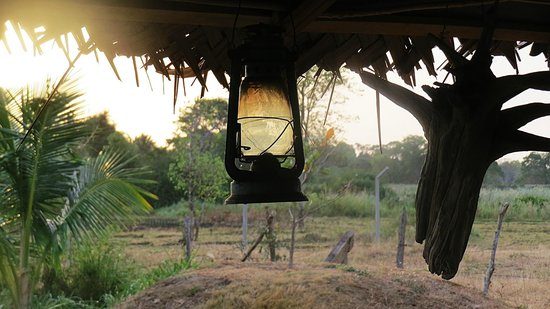 Lotus Chalets Eco Hotel: View from the Jungle Bar