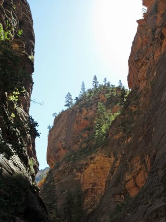 Temple of Sinawava Trail: Amazing canyon walls