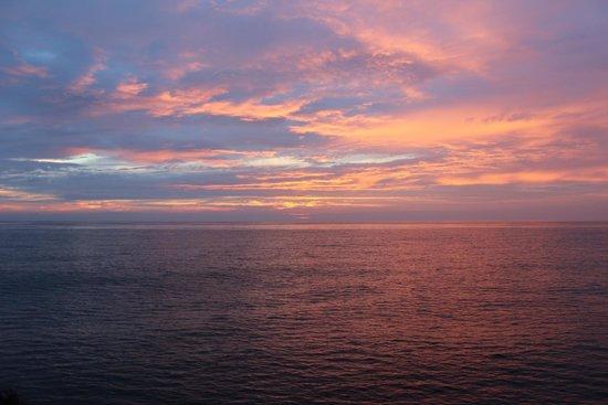 New England Aquarium Whale Watch : Golden Sky