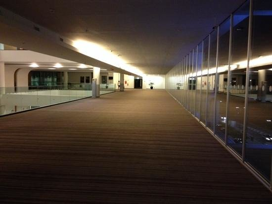 Sheraton Milan Malpensa Airport Hotel & Conference Centre : First looong hallway to get to the actual hallway with rooms