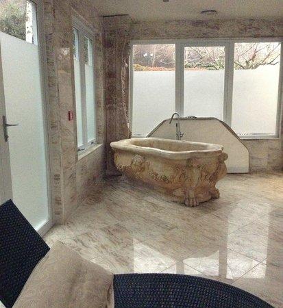 Nugget Point Queenstown Hotel : Bathtime?