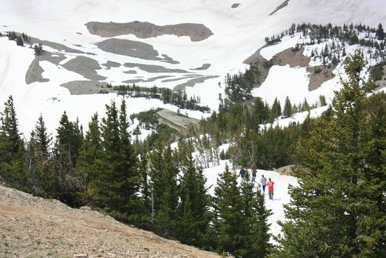 Jackson Hole Aerial Tram: Trek down from the top