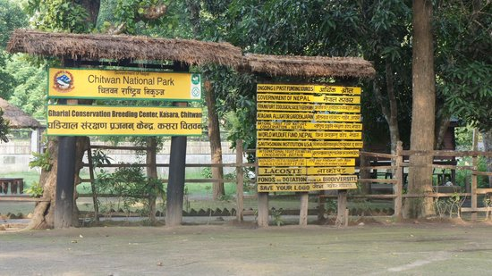 Eco Wildlife Lodge: Chitwan National Park