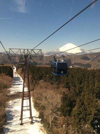 Hotel Green Plaza Hakone : View we saw while on our way to hotel!