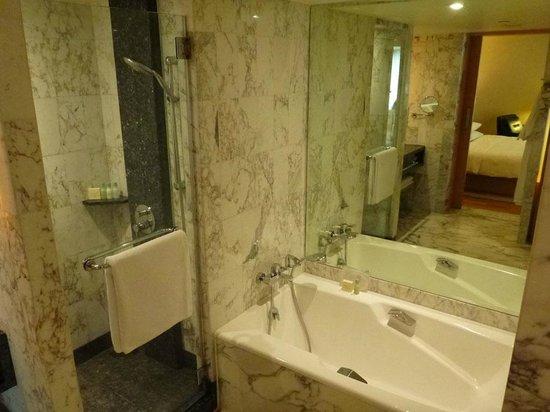 Grand Hyatt Singapore: Shower & tub.