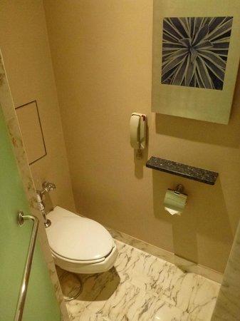 Grand Hyatt Singapore: Toilet.