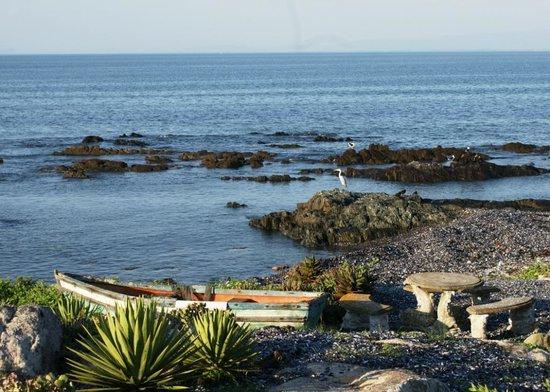 Alegria Restaurant: The view