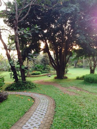 Hyatt Regency Yogyakarta: Most of the garden were great, but hotel also need to pay attention to this area- the bold land