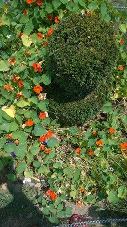 Chashme Shahi Gardens : Garden 3