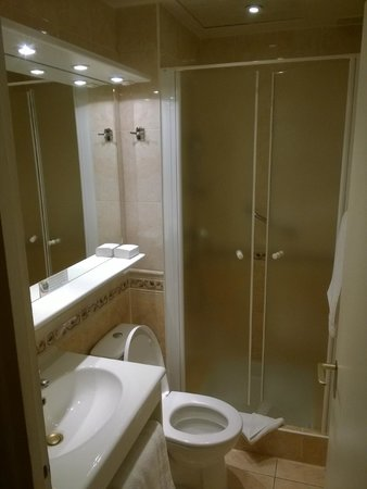 Hotel Terminus Lyon: Bathroom of the smallest room