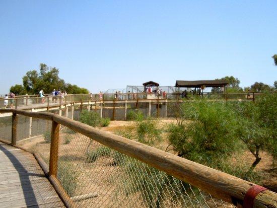 Friguia Park: view of 'predators' area