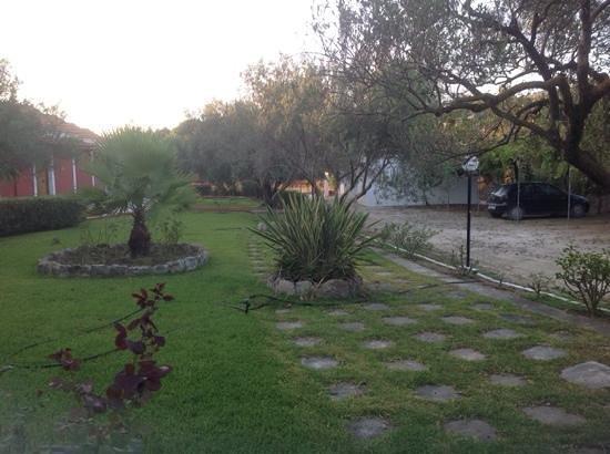 Hotel Dendrolivano: outside