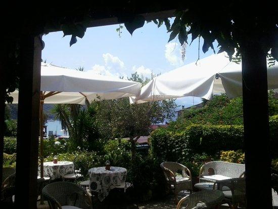 Hotel Danila : il buongiorno del mattino