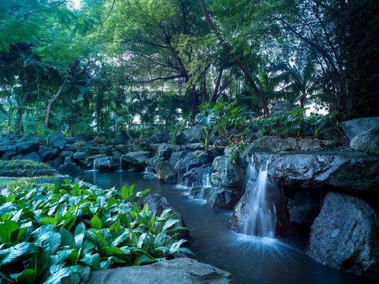 Makati Shangri-La Manila: Hotel garden