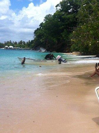 Luxury Bahia Principe Cayo Levantado Don Pablo Collection: retour plongée