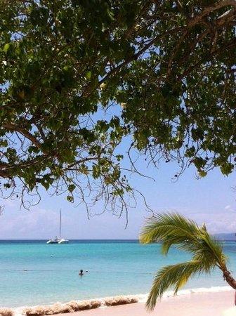Luxury Bahia Principe Cayo Levantado Don Pablo Collection: plage