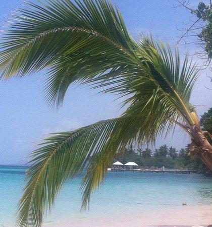 Luxury Bahia Principe Cayo Levantado : plage