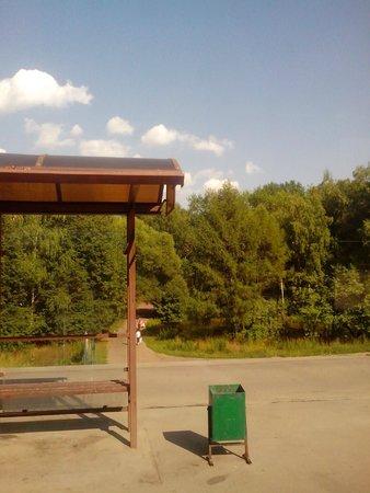 Biryulevskiy Dendropark