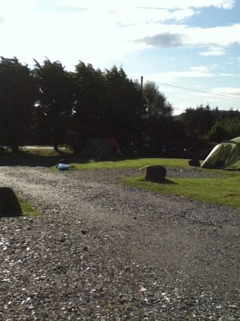 Clifden Camping and Caravan Park: Camping